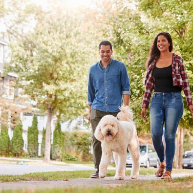 couple-walking-dog-around-neighborhood