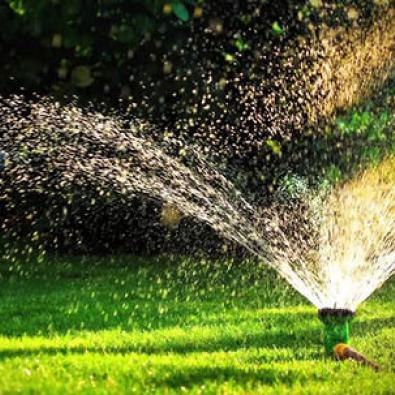 Watering is an important part of lawn care