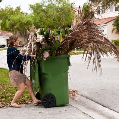 woman-disposing-of-tree-branches
